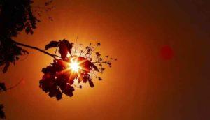 Está preparado? Inmet alerta para calor extremo de 44°C e risco de morte Coxim está na Lista