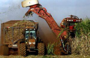 Produtor de cana-de-açúcar não precisará emitir nota fiscal quando destinar à indústria sucroalcooleira