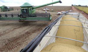 Conab estima colheita de 264,8 milhões de toneladas de grãos